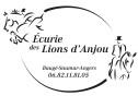Ecurie Pension chevaux Saumur Angers Baugé